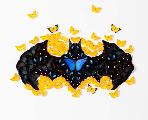 Batman Butterfly White