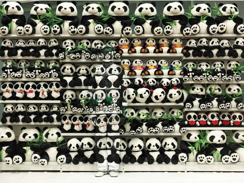 Hide in the city - Panda