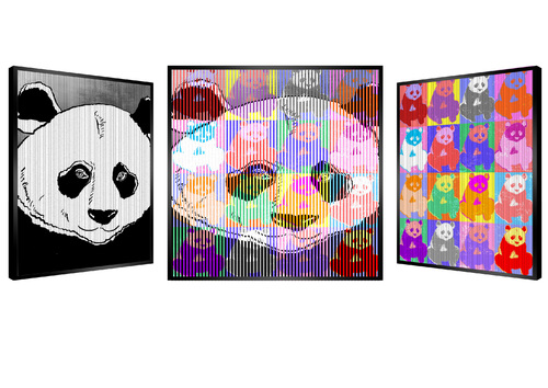 My Shiny Panda, 2020