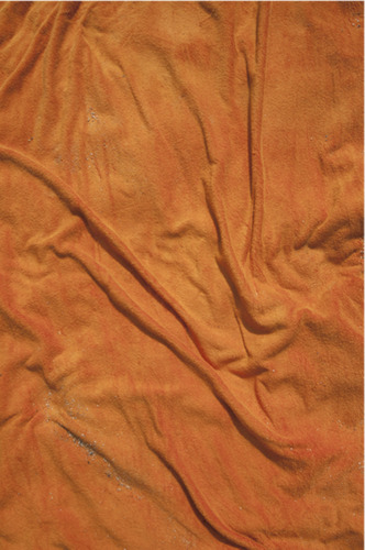 Empreinte (The Imprint) Orange n°7, 2010