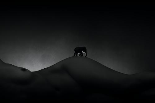 L'elephant de Valou