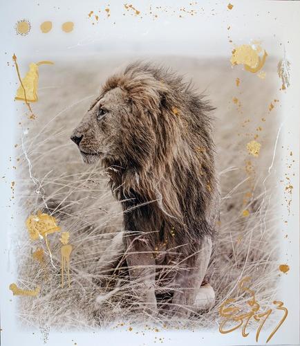 Simba Gold (132cm)